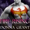 Fire Rising: Dark Kings, Book 2 - Donna Grant, Antony Ferguson, Tantor Audio