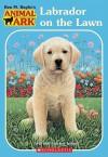 Labrador on the Lawn (Animal Ark (Prebound)) - Lucy Daniels, Ann Baum, Mary Ann Lasher