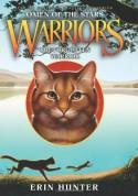 The Forgotten Warrior - Erin Hunter
