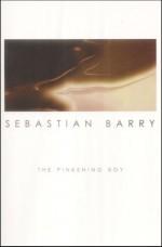 The Pinkening Boy - Sebastian Barry