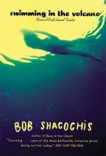 Swimming in the Volcano - Bob Shacochis