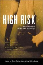 High Risk: An Anthology of Forbidden Writings - Mary Gaitskill, William S. Burroughs, Amy Scholder, Dennis Cooper, Ira Silverberg, Dorothy Allison, Essex Hemphill