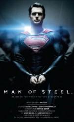 Man of Steel - Greg Cox