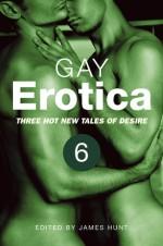 Gay Erotica, Volume 6 - James Hunt, G.R. Richards, Landon Dixon, Julian Benedict
