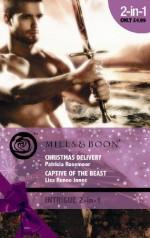 Christmas Delivery / Captive of the Beast - Patricia Rosemoor, Lisa Renee Jones