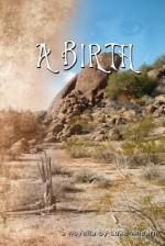A Birth: A Novella (print edition) - Luke Ahearn