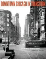 Downtown Chicago in Transition - Eric Bronsky