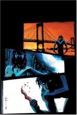 Nightwing: Brothers in Blood - Bruce Jones, Joe Dodd, Paco Diaz