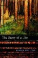 The Story of a Life - Aharon Appelfeld, Aloma Halter