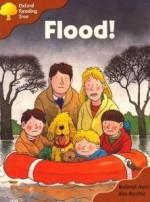 Flood - Roderick Hunt, Alex Brychta