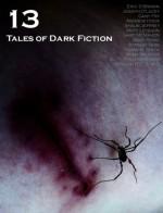13: Tales of Dark Fiction - Adam Bradley, Eric S. Brown, Alan Spencer, Fred Venturini, William R.D. Wood, Joseph D'Lacey, Andrew Hook, Shaun Jeffrey, Matt Leyshon, Gary McMahon, Andy Remic, Stanley Riiks, Tommy B. Smith