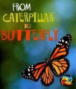 From Caterpillar to Butterfly - Anita Ganeri