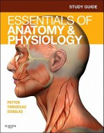 Study Guide for Essentials of Anatomy & Physiology - Andrew Case