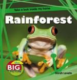 Rainforest - Anita Ganeri, Anita Ganeri