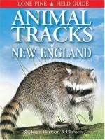 Animal Tracks of New England (Lone Pine Field Guides) - Ian Sheldon, Tamara Hartson, Mark Elbroch
