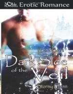 Dark Side of the Veil - Stormy Glenn