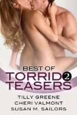 Best of Torrid Teasers Volume 2 - Tilly Greene, Susan M. Sailors, Cheri Valmont