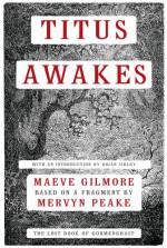Titus Awakes: The Lost Book of Gormenghast - Maeve Gilmore, Mervyn Peake, Brian Sibley