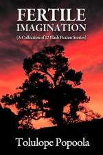 Fertile Imagination (Flash Fiction Collection #1) - Tolulope Popoola