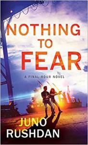 Nothing to Fear (Final Hour Book 2) - Juno Rushdan