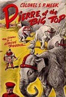 Pierre of the Big Top - S.P. Meek