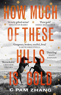 How Much of These Hills is Gold - Wei Zhang