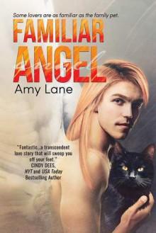 Familiar Angel - Amy Lane