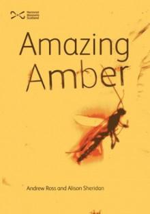 Amazing Amber - Andrew Ross, Alison Sheridan, Neil Mclean, Bill Crighton