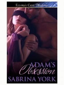 Adam's Obsession (Wired #1) - Sabrina York