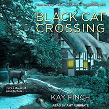 Black Cat Crossing (A Bad Luck Cat Mystery #1) - Kay Finch,Amy Rubinate