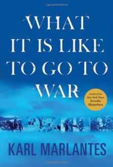 What It Is Like to Go to War (Playaway Adult Nonfiction) - Karl Marlantes