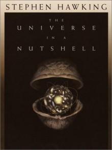 The Universe in a Nutshell - Stephen Hawking