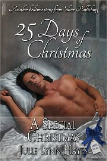 A Special Christmas - Julie Lynn Hayes