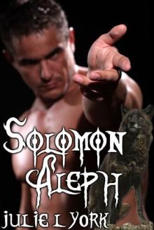 Solomon Aleph - Julie L. York