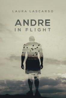 Andre in Flight - Laura Lascarso