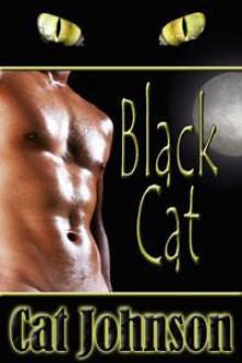 Black Cat - Cat Johnson