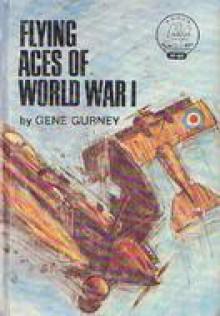 Flying Aces of World War I - Gene Gurney
