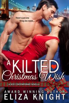 A Kilted Christmas Wish - Eliza Knight