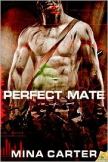 Perfect Mate - Mina Carter