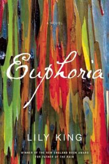 Euphoria - Lily King