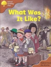 What Was It Like? - Roderick Hunt, Alex Brychta