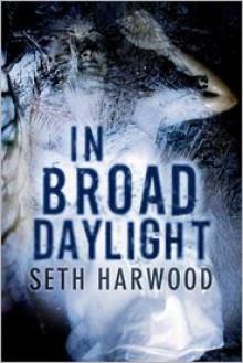 In Broad Daylight - Seth Harwood