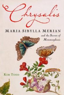Chrysalis: Maria Sibylla Merian and the Secrets of Metamorphosis - Kim Todd