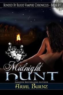 Midnight Hunt - Arial Burnz
