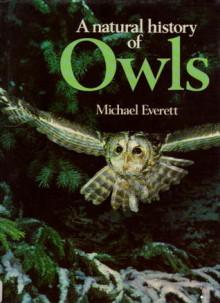A Natural History Of Owls - Michael Everett