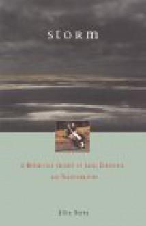 Storm - Allen Noren