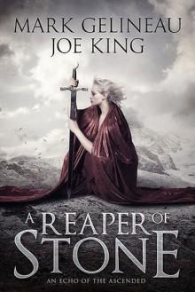 A Reaper of Stone - Mark Gelineau,Joe King