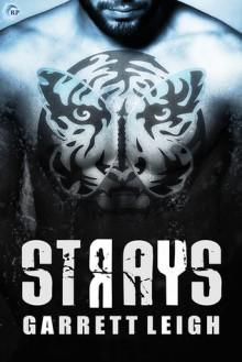 Strays - Garrett Leigh