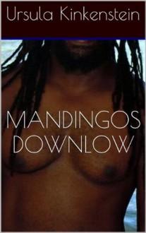 Mandingos Downlow: The Taming of an Ex-Con (Str8 Studs Downlow) - Ursula Kinkenstein