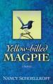 Yellow-Billed Magpie - Nancy Schoellkopf